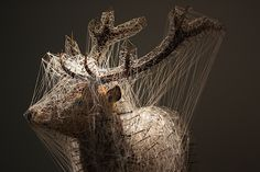 Julien Salaud : Constellation du cerf (harpe) II, 2011