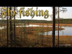 Fly fishing in Kainuu - (More info on: https://1-W-W.COM/fishing/fly-fishing-in-kainuu/)