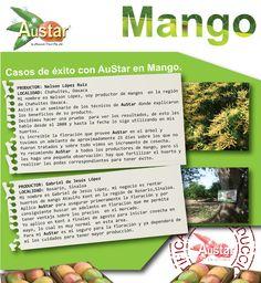 www.austar.mx
