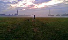 stimmungsvoller Morgenspaziergang am Rhein