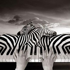 ~ by Thomas Barbey