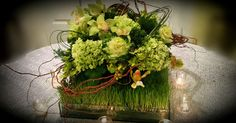 www.flowersbybrian.com Green Centerpieces, Cabbage, Vegetables, Cabbages, Vegetable Recipes, Brussels Sprouts, Veggies, Sprouts