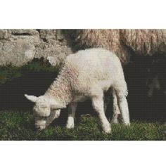 Mary Had A Little Lamb, pattern for loom or peyote | GGsDesigns - Patterns on ArtFire