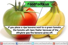 Got any other fun food facts for me to share? Let me know in the comments.