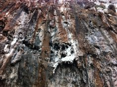 Grotta del Genoese - Levanzo sicily