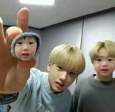 jisung and chenle Jisung Nct, Nct 127, Park Ji-sung, Nct Life, Funny Kpop Memes, Wattpad, Meme Faces, Thing 1, Kpop Boy
