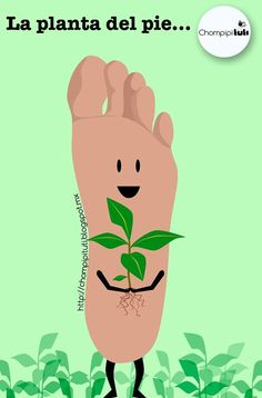 Planta del pie. (Descripción gráfica)