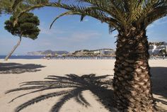 Il Viaggiatore Magazine - Spiaggia del Veraclub Palmira Isabela, Maiorca