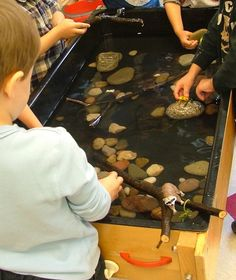 -A River habitat in the sensory table.