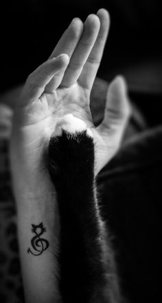 small cat tattoo idea #ink #girly #tattoos #YouQueen #infographic