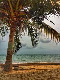 Beach views in Hopkins, Belize