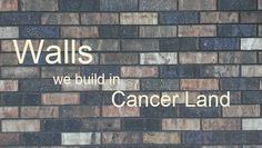 Hierarchies & walls in Cancer Land