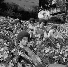 The Jackson 5 autumn love and also my birthday next month so Yay! The Jackson Five, Jackson Family, Jackie Jackson, You Are The Sun, You Are My Life, Michael Jackson Smile, The Jacksons, Rare Pictures, Children Images