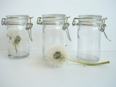 Small Glass Jelly Jar with Locking Lid