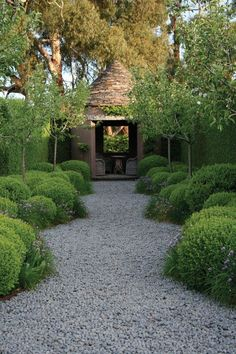 Garden design with gravel and stones - 25 garden ideas for you - landscaping gravel landscaping ideas plants garden furniture - Gravel Garden, Garden Landscaping, Pea Gravel, Landscaping With Gravel, Landscaping Ideas, Boxwood Garden, Boxwood Hedge, Garden Plants, Landscape Architecture