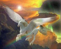 2016/10/02 Pegasus                                                                                                                                                                                 More