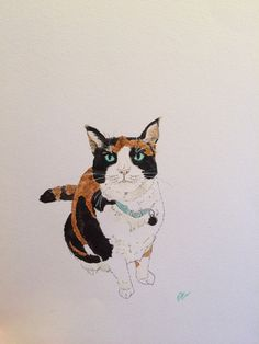 Watercolor cat.