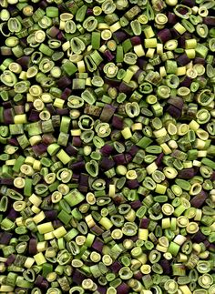 49640 Phaseolus by horticultural art, via Flickr