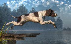 """Diving Dog"" by Daniel Eskridge"