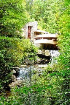 frank lloyd wright organic architecture essay