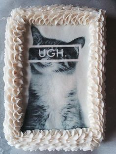 Cat Silver Tabby Lying Kitty Wafer or Icing edible Oblong Cake topper custom
