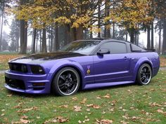 Purple Mustang! The Best One Out There...Favorite Color, too...The Purple Heart Mustang !!! Love 2 get one of these !!!!