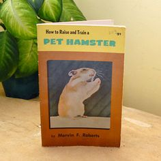 Hamster Book now featured on Fab.