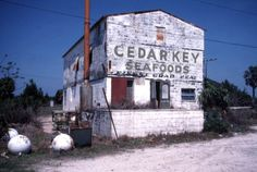 abandoned florida | ... this photo state archives of florida florida memory http floridamemory