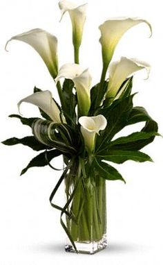 large white calla lilies are mixed with small aralia leaves, variegated aspidistra leaves and delicate lily grass in a clear glass vase.