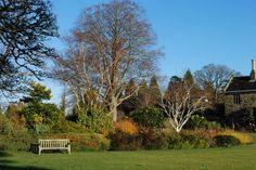 Winter Garden Wakehurst Place