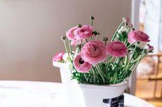 Love these ranunculus flowers
