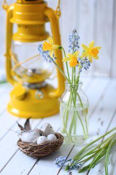 Spring into Easter .: X ღɱɧღ