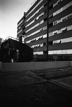 telo, vasconi - #laurentino38 -