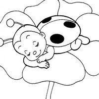 Desenho De Joaninha Dormindo Na Flor Para Colorir Paginas Para