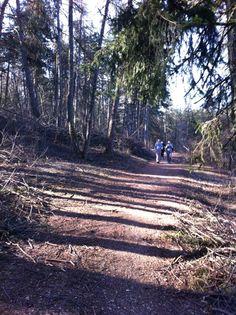 7000 passi di #benessere in #trentio @pinetahotels, ogni mattina vi aspetto per una passeggiata splendida!