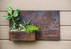 AmazonSmile : Evergreen Rust Dunes Rectangular Metal Wall Planter : Patio, Lawn & Garden
