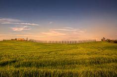 Tuscany Tour Travel San Gimignano Florence South Siena Countryside Chianti Classico Uffizi Vinci Fontes Clusinae   Daily Mail Review Reporter John Carter Travelogue   Invitation To Tuscany Holidays Villas Apartments