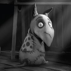 What S The Dog S Name In Frankenweenie