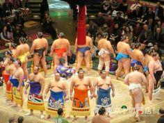 SUMO-Japanese Culture in Tokyo - Tokyo Shitamachi Shotengai Project coming soon 2017!!