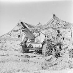 BRITISH ARMY NORTH AFRICA 1942 (E 15019)   A 25-pdr field gun under camouflage netting in the Western Desert, 29 July 1942.