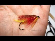 Tying the Col. Blyth (Salmon Fly) with Davie McPhail - YouTube
