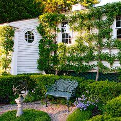 Garden Design: Gordon Hayward  Photographs: Matthew Benson. Espaliered apple trees ornament the garage wall.
