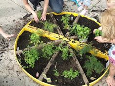 Gardening in our Outdoor Classroom by Pam from How Long is This Hall at PreK + K Sharing