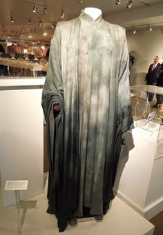 Voldemort costume from harry potter and the deathly hallows voldemort costume solutioingenieria Gallery