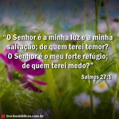 Continue Lendo o Versículo Salmos 27:1 Aqui