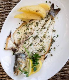 How to Prepare and Grill Whole Fish | KALOFAGAS | GREEK FOOD & BEYOND Whole Sea Bass Recipes, Fish Monger, Red Snapper, Healthy Dishes, Greek Recipes, Risotto, Seafood, Grilling, Turkey