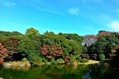 Tokyo 국립박물관 후원