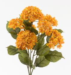 "The orange brown hydrangea creates contrast and highlights to your reception centerpieces and home decor making them ideal for table floral centerpieces and floral wedding decorations.   Orange Brown Hydrangea measures 22"" L with 7 stems and 5"" - 6"" flower heads and leaves."