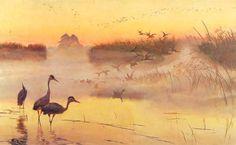 Świt. Królestwo ptaków - Józef Chełmoński (1906)