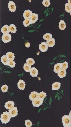 Brandy Melville phone case daisies background wallpaper